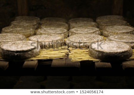 Traditional Auvergne cheese from France Stock photo © boggy