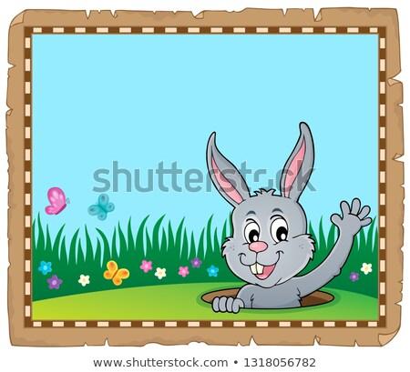 pergamena · coniglio · pasquale · carta · arte · coniglio · testa - foto d'archivio © clairev