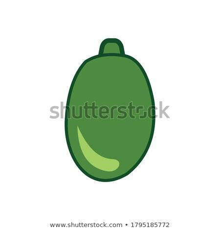 Exótico suculento fruto vetor isolado ícone Foto stock © robuart