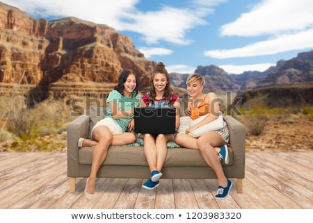 friends with laptop computer over grand canyon Stock photo © dolgachov