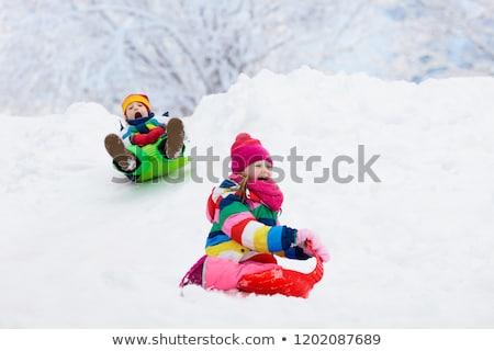 happy little kids sliding on sleds in winter Stock photo © dolgachov