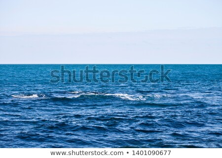 Waving water surface of the Adriatic sea and sky. Stock photo © marylooo