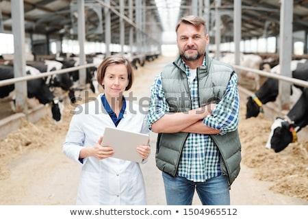 два молодые современный рабочие большой молочная Сток-фото © pressmaster