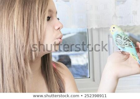 Młodych nastolatek papużka falista domu oka dziecko Zdjęcia stock © Lopolo