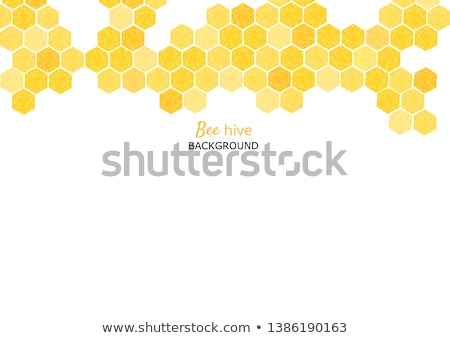 Arı böcek doğal ev poster Stok fotoğraf © pikepicture