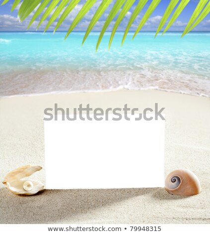 copy space summer sand beach shells pearl blank stock photo © lunamarina