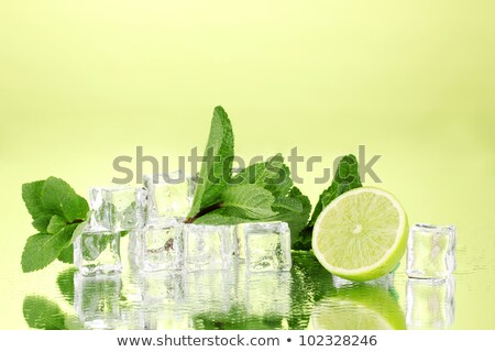 Fresh mint leaf and ice cubes with droplets and lime on backgrou Stock photo © dashapetrenko