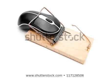Tuzak bilgisayar fare usb fare iş bilgisayar Stok fotoğraf © KonArt