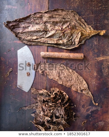 Large Knife in Hand Stock photo © SimpleFoto