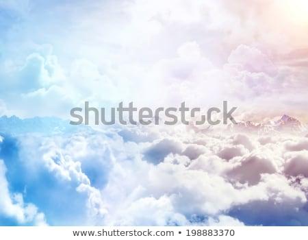 лет небо птица Flying небе драматический Сток-фото © Alvinge