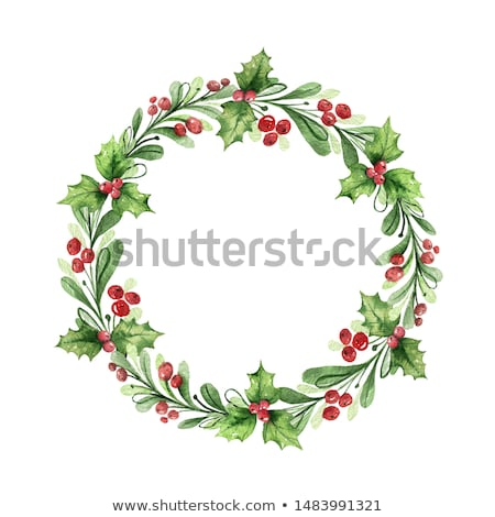 Holly wreath Stock photo © jsnover