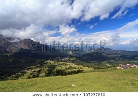 Passz völgy légifelvétel falu fa tavasz Stock fotó © Antonio-S