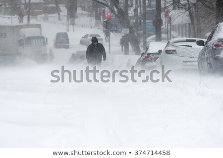 Rare Fall Blizzard Snow Storm Stock photo © ArenaCreative