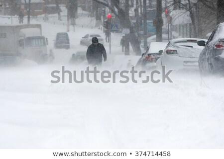 rare fall blizzard snow storm stock photo © arenacreative
