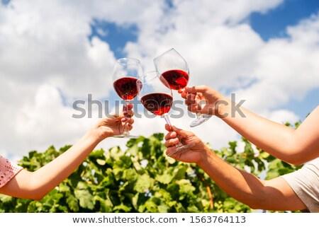 najaar · Rood · wijnstokken · vallen · decoratie - stockfoto © davidgn