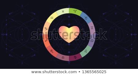 Vector illustration on astrological compatibility Stock photo © m_pavlov