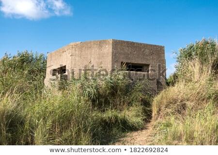 ww2 ruins over the sea Stock photo © Antonio-S