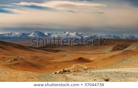 altai mountains beautiful highland landscape mongolia stock photo © iserg