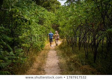 Couple hiking in the woods Stock photo © photography33