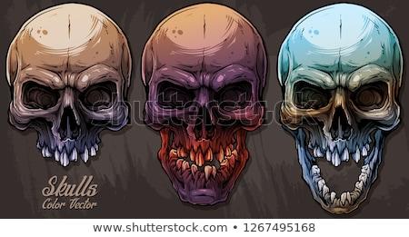 Skull splatter grunge symbol Stock photo © mikemcd