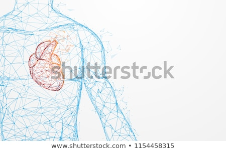 Digital illustration of Human heart in abstract medical background Stock photo © 4designersart