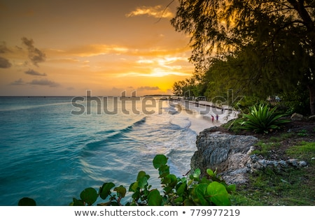 empresa · praia · Barbados · caribbean · nuvens · paisagem - foto stock © phbcz