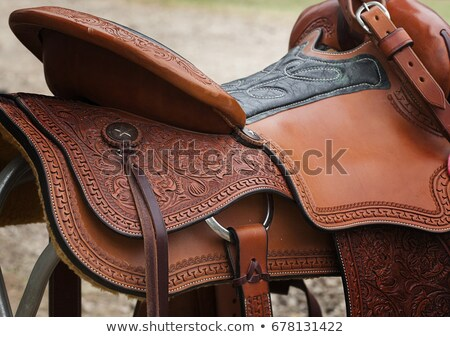 Detail of Horse Saddles Stock photo © iofoto