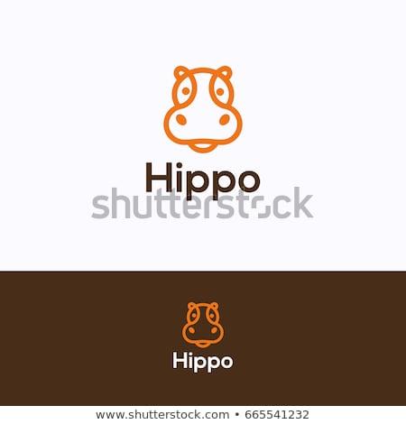 Vector icon hippo Stock photo © zzve