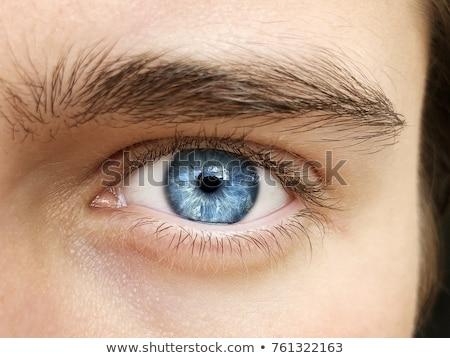 マクロ · クローズアップ · ショット · 人間 · 眼 · 極端な - ストックフォト © SecretSilent