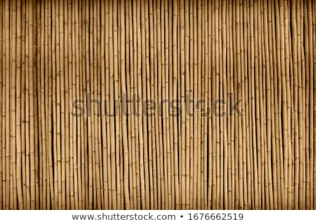 Bamboe muur houten gebouw Stockfoto © rhamm