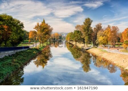 Kanał rzeki Praha Świt wody charakter Zdjęcia stock © CaptureLight