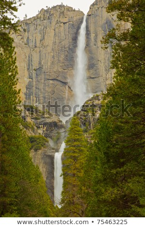 Upper and lower Yosemite falls with a powerful spring water flow Stock photo © meinzahn