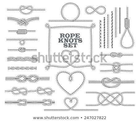 Kötél szívek vektor szett csomó esküvői meghívó Stock fotó © beaubelle
