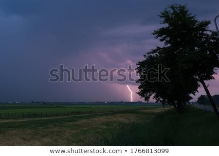 burza · z · piorunami · drzewo · grzmotu · burzy · deszcz - zdjęcia stock © ottoduplessis