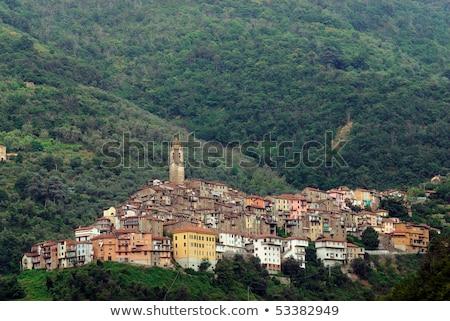 Pequeño medieval ciudad Italia panorámica vista Foto stock © mahout