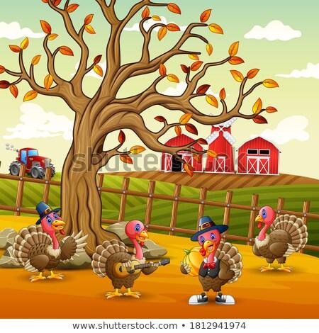 Turkije · veld · boeren · vogel · boerderij - stockfoto © rhamm