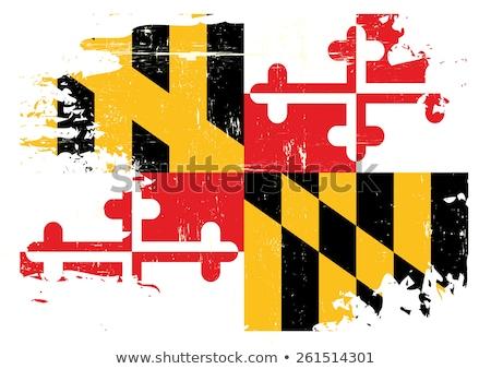 Гранж Мэриленд флаг плакат большой кадр Сток-фото © tintin75