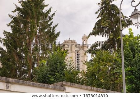 Historyczny budynku ukryty za drzew południe Zdjęcia stock © gewoldi