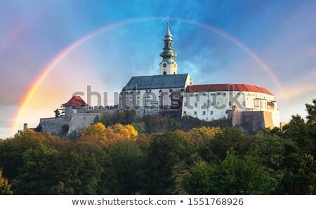 Kasteel Slowakije gebouw muur reizen architectuur Stockfoto © phbcz