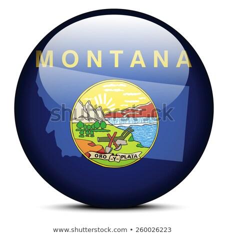 Carte pavillon bouton USA Montana vecteur Photo stock © Istanbul2009