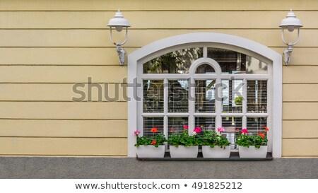 Różowy fasada biały Windows Rumunia Zdjęcia stock © pixachi