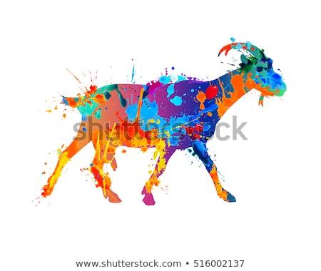 水彩画 実例 ヤギ プロファイル 自然 ホーム ストックフォト © artibelka
