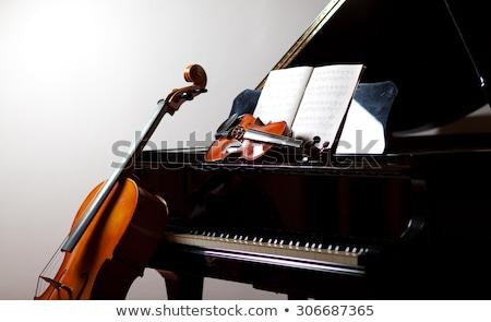 Cello and piano Stock photo © ldambies