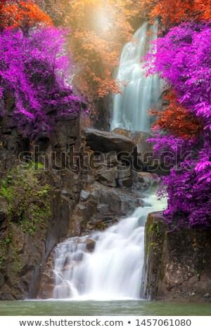 Tropical Waterfall Chathaburi Stok fotoğraf © vichie81