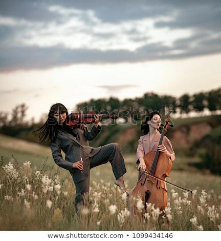 Skrzypek dwa grać trawy niebo muzyki Zdjęcia stock © Paha_L