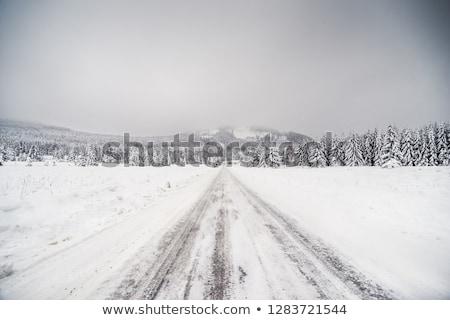 Strada Repubblica Ceca panorama neve inverno impianto Foto d'archivio © phbcz