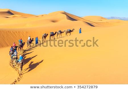Marokkó · Szahara · sivatag · homok · égbolt · nap - stock fotó © johnnychaos