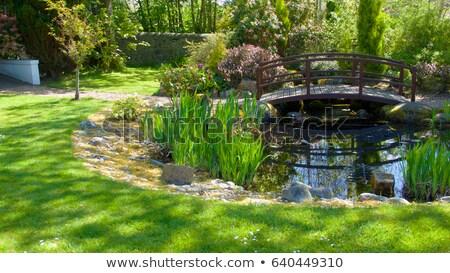 Híd tavacska víz fa fű zöld Stock fotó © bluering