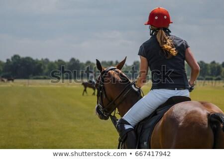 Foto stock: Homem · cavalo · jogar · esportes · fundo · arte