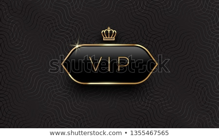 golden vip card vector illustration stock photo © carodi